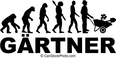 allemand, évolution, mâle, jardinier