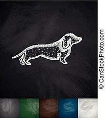 allemand, badger-dog, icône