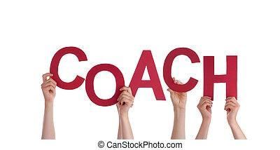 allenatore, tenere mani