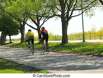 aller bicyclette, dans, a, parc