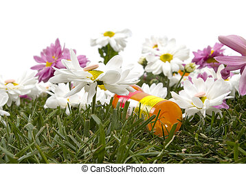 Colorful daisies and allergy medication on grass (Allergy season)