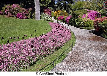 alley in historic garden of Villa Carlotta on lake Como,...