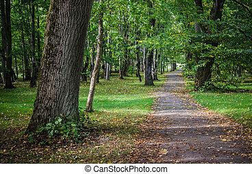 Alley in old autumn park, autumn landscape