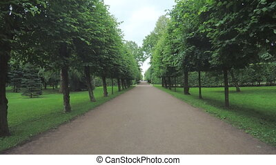 Alley in the Park in Peterhof - Well appointed tidy path in...