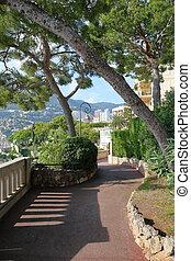Alley in the park of Monaco