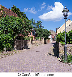 alley in werder (havel) in summer