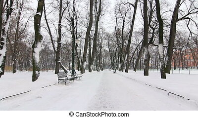 Alley in winter park, St.Petersburg