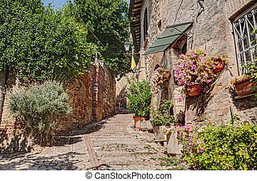 alley with flowers and plants in Montefalco, Umbria, Italy -...
