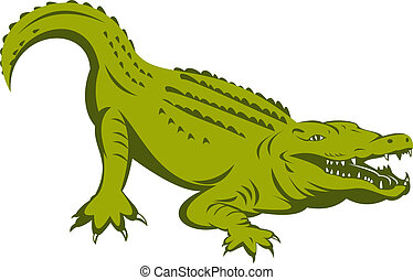 Alligator about to attack - illustration of an Alligator...