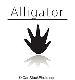 Alligator animal track with name and reflection on white ...