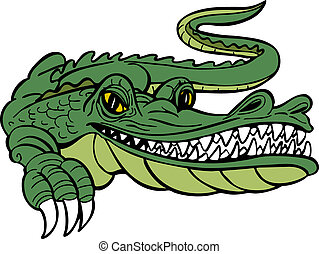 Alligator Cartoon - Alligator character isolated on a white...