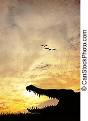 Alligator silhouette at sunset