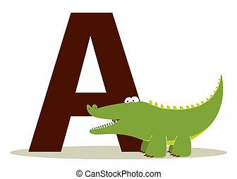 alligatore, alfabeto