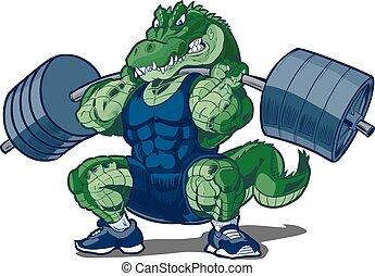 alligatore, weightlifting, carrello, mascotte