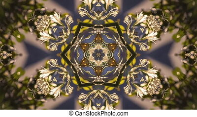 Allium flowers in a geometric flower video. Geometric...
