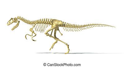 Allosaurus dinosaur photo-realistic skeleton.