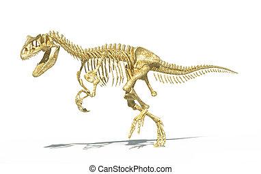 Allosaurus dinosaur skeleton photo-realistic, scientifically correct. On white background with drop shadow.