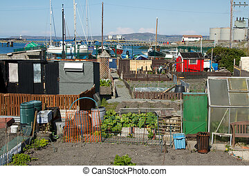 allotments.