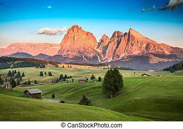 alm, itália, último, tirol, seiser, langkofel, luz solar,...