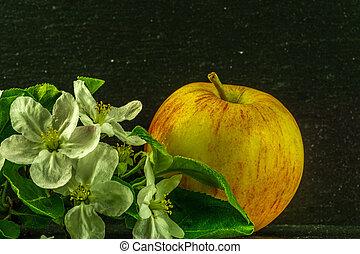 alma, zöld, sárga zöld, white virág, piros