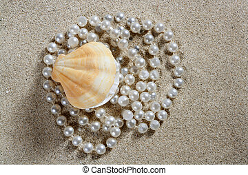 almeja, macro, perla, arena, cáscara, playa blanca
