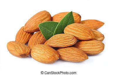 almendras, semilla, nueces