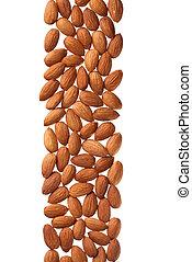 Almond border isolated on white background