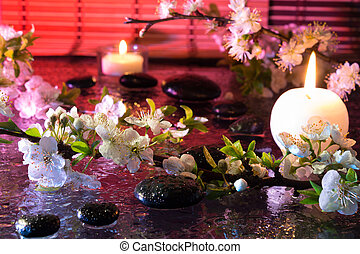 almond flowers with candle