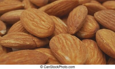 Almond macro footage with camera motion closeup