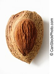Almond macro image over white background