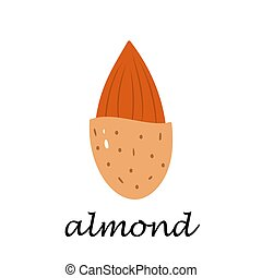 Almond on white background in cartoon style.