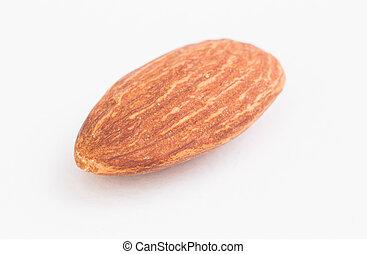 Almond on white background