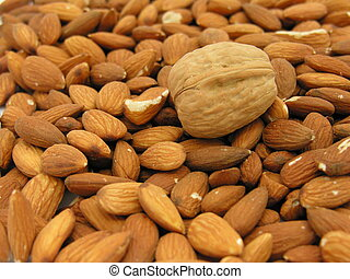 Unshelled almonds with just one shelled walnut.
