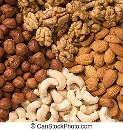 (almonds, diferente, nozes, cima, nozes, filbers), cajus, fim