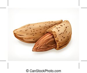 Almonds in shell, vector icon