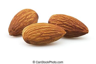 Almonds kernel in closeup