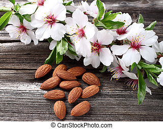 Almonds kernel with flowers