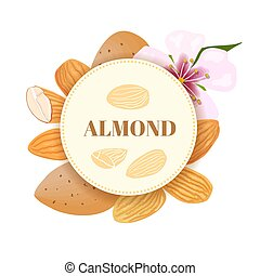 Almonds. nuts in skins and peeled with flower. round badge with text