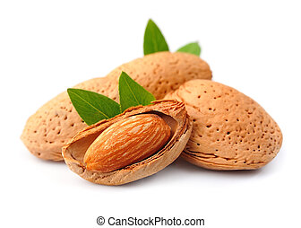 Almonds nuts with leaves close up on the white