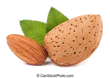 almonds with leaf isolated on white background
