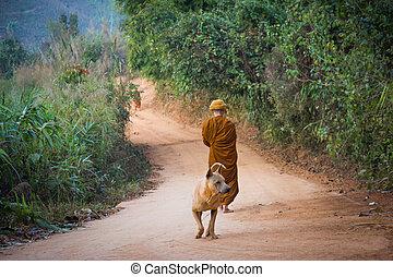 Alms Round of Buddhist Monk in Thailand.