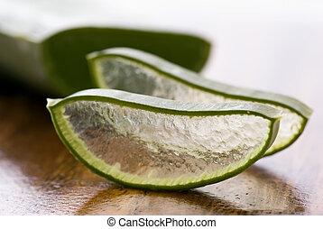 Aloe Leaf and Aloe Slice