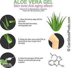 Aloe vera is a succulent plant species of the genus Aloe. It grows wild in tropical climates around the world and is cultivated for agricultural and medicinal uses. Aloe is also used for decorative purposes and grows successfully indoors as a potted plant.