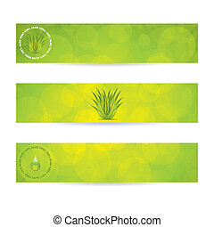 Aloe Vera banners. Vector