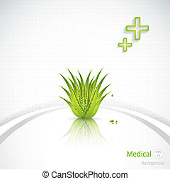 Aloe Vera concept design