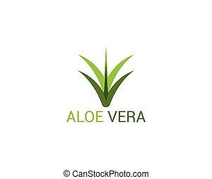 Aloe vera icon logo template