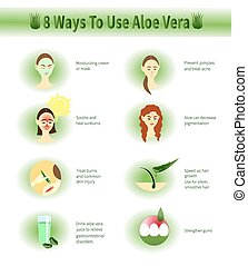 Aloe Vera infographic. Ways To Use Aloe Vera.