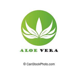 Aloe vera logo vector ilustration
