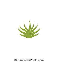 Aloe vera logo vector ilustration template