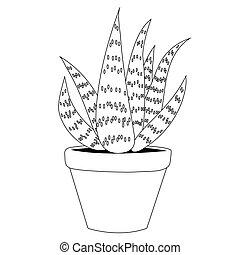Aloe vera outline. Isolated vector illustration